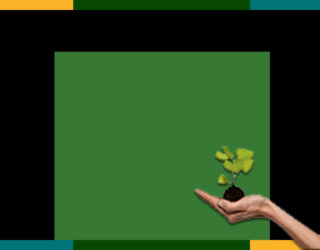 Environmental Solutions & Trends