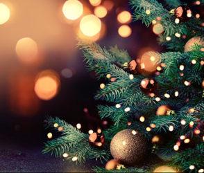 RCC Holiday Shopping Survey 2020