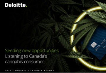 Seeding new opportunities: Listening to Canada's cannabis consumer – Deloitte