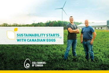 Farming a more sustainable future
