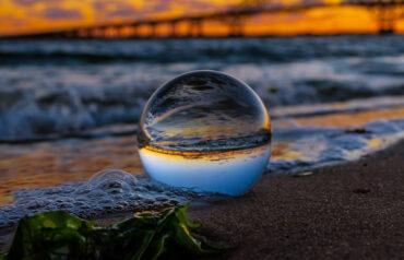 Atlantic Bubble suspended indefinitely